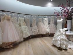 [Showroom đẹp] Showroom áo cưới